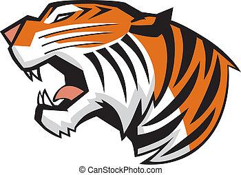 cabeça, tiger, vetorial, rugindo, vista lateral