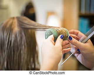 cabelo, close-up, cuidado