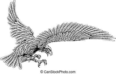 cair, águia