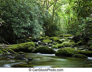calmo, sobre, rio, fluir, pedras