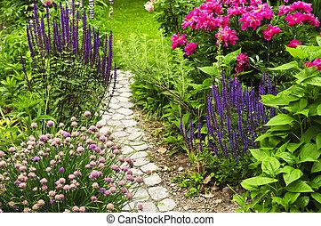 caminho, jardim, florescer
