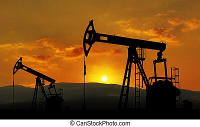 campo, óleo