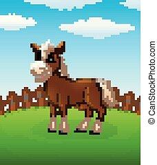 campo, cavalo, caricatura, feliz