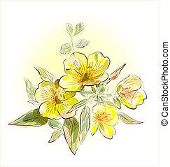 campo, flores, amarela