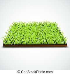 campo, quadrado, grama verde