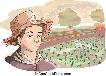 campos, arroz, homem, agricultor