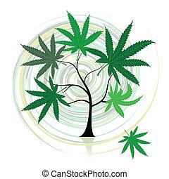 cannabis, árvore