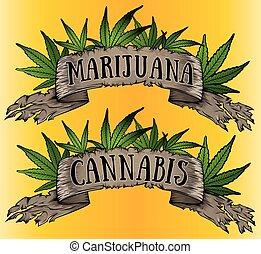cannabis, papel, folha, verde, pergaminho