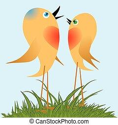 cante, song., pássaros, primavera