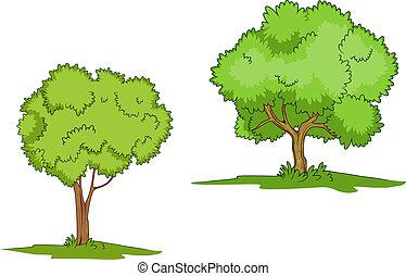 capim, árvores verdes