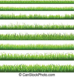 capim, borda, verde