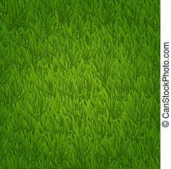 capim, campo verde, fundo, natureza