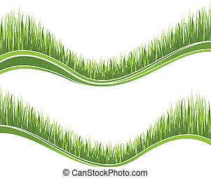 capim, verde, dois, ondas