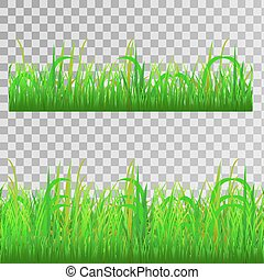 capim, verde, seamless