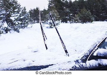 car, close-up, conceito, -, neve