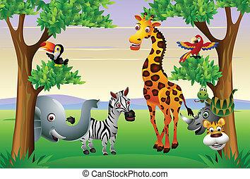 caricatura, animal, engraçado, safari
