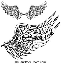 caricatura, asa anjo