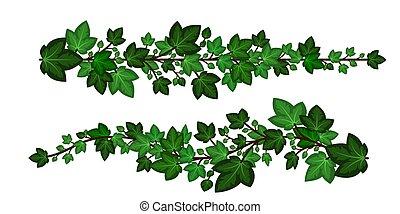 caricatura, isolado, elementos, style., branches., jogo, folhas, verde, guirlandas, decorativo, vetorial, hera, ilustração, branca, experiência., desenho