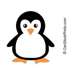 caricatura, pingüim, branca, cute