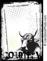 cartaz, vaca, fundo