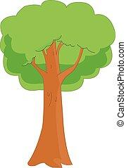 carvalho, vetorial, árvore
