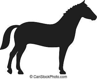 cavalo, ícone, vetorial