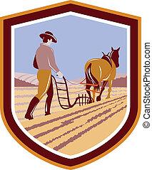 cavalo, cultive campo, retro, agricultor, crista, arar
