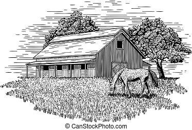 cavalo, estável, ilustração
