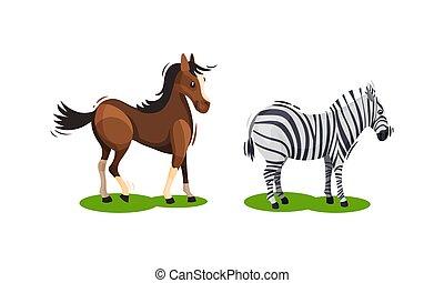 cavalo, jogo, vetorial, pastar, crista, campo verde, zebra
