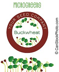 center., planta, brotar, elemento, embalagem, sementes, buckwheat., semente, desenho, redondo, microgreens