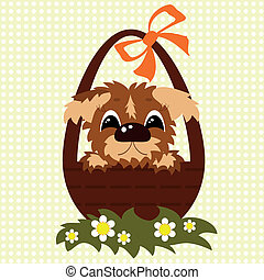 cesta, cão