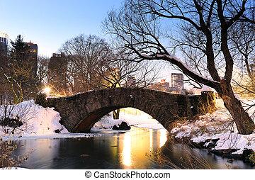 cidade, central, inverno, parque, york, novo, manhattan