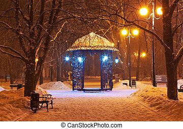 cidade, decorado, parque, inverno, noturna