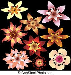 cobrança, flores, abstratos, (vector)