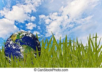 conceito, meio ambiente, globo, capim