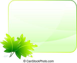 conservação ambiental, experiência verde