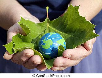 conservação, ambiental