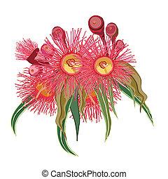 cor-de-rosa, eucalipto, flores, grupo