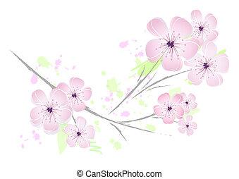 cor-de-rosa, floral, flor, desenho, -