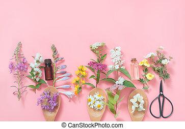 rosa selvagem flor