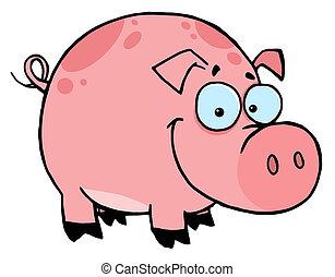 cor-de-rosa, sorrir feliz, manchas, porca