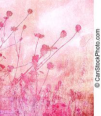 cor-de-rosa, verão, macio, prado, fundo