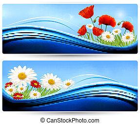 cor, flowers., bandeiras, vector., natureza