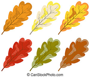 cor, outono sai, cobrança