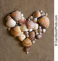 coração, areia, concha