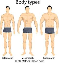 corporal, types., macho
