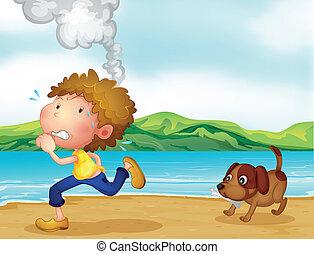 corrida menino, seu, cão