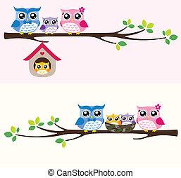 coruja, família, ilustração