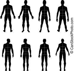 costas, comprimento, cheio, frente, homem