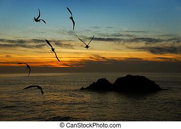 crepúsculo, califórnia